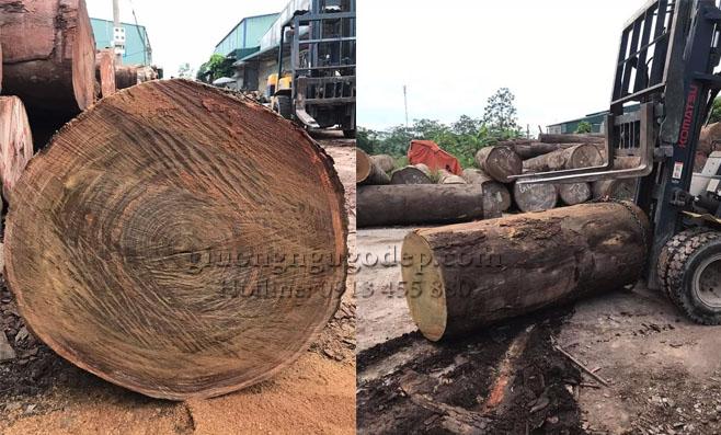 Đơn vị sản xuất giường ngủ gỗ đẹp uy tín nhất tại khu vực Hà Nội